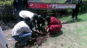 Members planting trees at Freedom Corner Nairobi during GDAMS Nairobi 2015